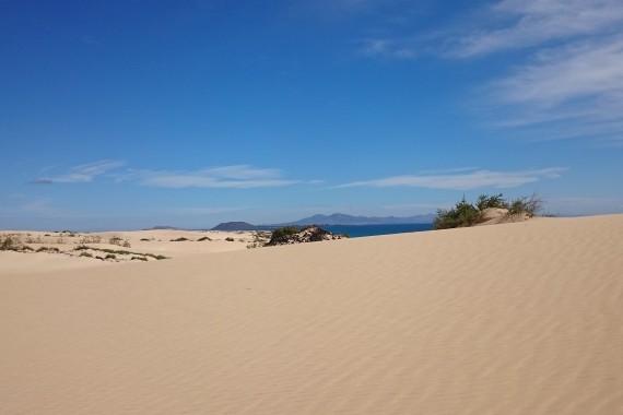 Fuerteventura - Otok belih sipin